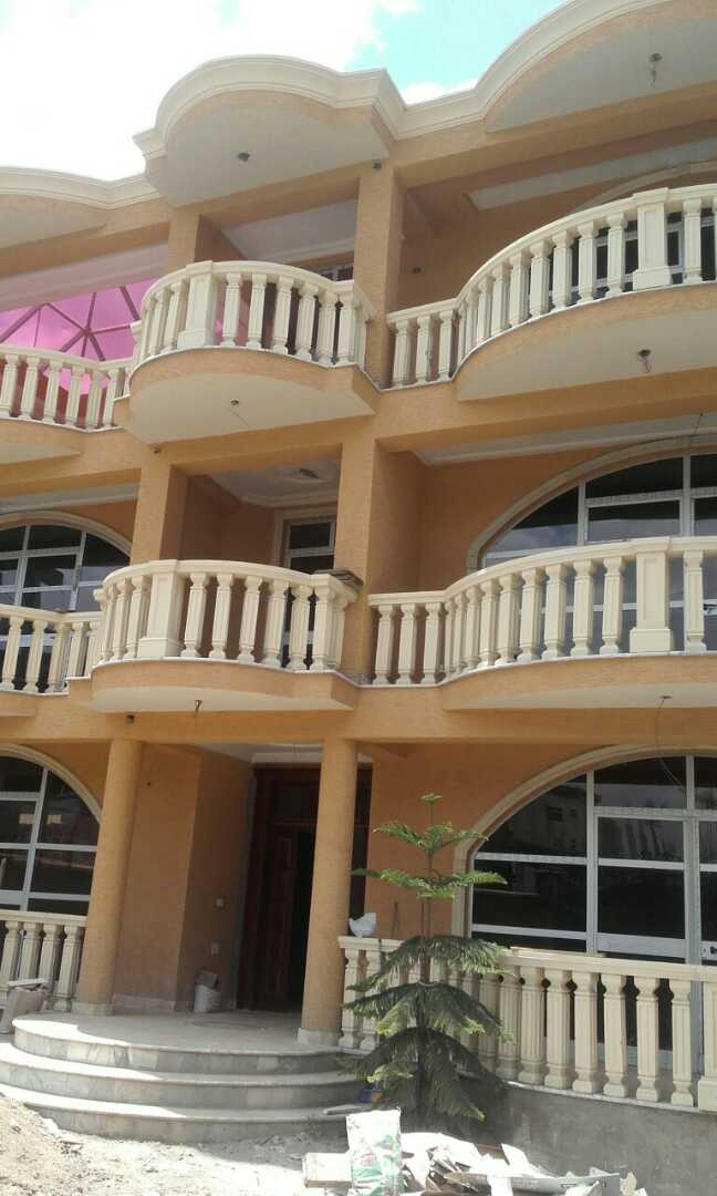 House for Rent - A+2 Luxurious Property - Addis Ababa Other