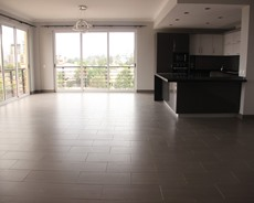 Elegant apartment for rent in Meskel flower EE 074