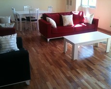 Neat,modern and fully furnished apartment in bole