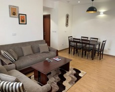 Elegant furnished apartment for rent in Bole EE247
