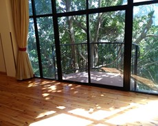Great 3bd Apt,Surrounded By Old And Big Trees,Bole
