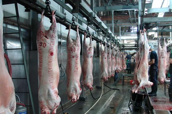 Addis-Ababa-Abattoirs-Enterprise