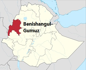 Amhara Region Accuses Benishangul-Gumuz of Collaborating with Armed Men