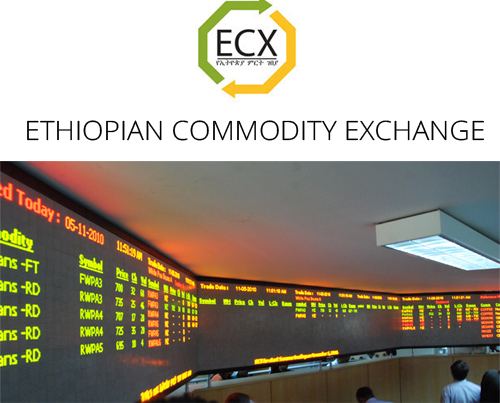 ethiopian commodity exchange The ethiopia commodity exchange (ecx) is a national multi-commodity exchange in ethiopia that brings together buyers and sellers of agricultural commodities participants on the ecx trade spot contracts that standardize the quality, quantity, payment and delivery of agricultural goods.