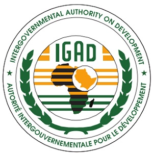 IGAD-Meeting