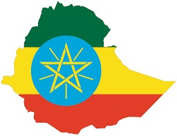Ethiopia-to-reduce-number-ministers