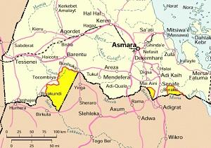 No-troop-withdrawal-Ethiopia