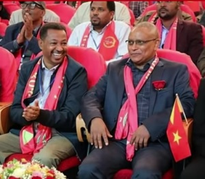 Ethiopia on Wrong Track, Says TPLF Chair